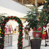Tree Lighting Ceremony Scheduled For Palisades Center