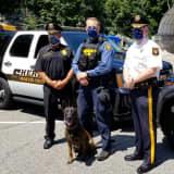 K9 Officer Helps Police Nab Boonton Man In String Of Morris County Burglaries