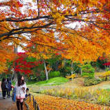 Cold Front Arrives In New Canaan This Weekend