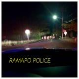 Police Encounter Cows Roaming Roadway In Rockland