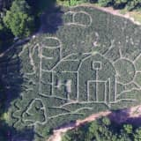 NJ Magazine Says Closter Corn Maze Is Among State's Best