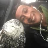 Wildlife Photographer Rescues Starving Snowy Owl In Stratford