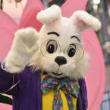 Yonkers Mall Easter Bunny's Cousin Fell Asleep During Session In New Jersey