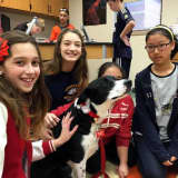 Lucy The Therapy Dog Spends Time With Anthony Wayne Students