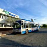 Woman Struck, Killed By CT Transit Bus
