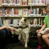 Franklin Lakes Library's Therapy Pets Program Returns