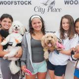Dogs Can Walk Red Carpet At Annual Woofstock Adoption Event In Edgewater