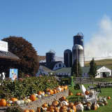 Firefighters Battle Cornfield Blaze At Dutchess Farm