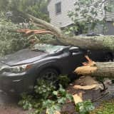 Large Tree Falls On Home In Fairfield County, Crushes Vehicle