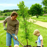 Plant a Tree For National Arbor Day, New Canaan