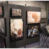 Come To Grand Opening Party Of Meraki Gallery In Garnerville