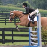 Horses Competing At Millbrook Trials