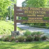 Lost Hiker Found In Ward Pound Ridge Reservation