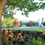 Yorktown's Hilltop Hanover Farm Celebrates Autumn With Family-Fun Events