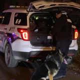 Manhunt Underway For Murder Suspect