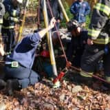 PHOTOS: 68-Year-Old Hillsdale Woman Rescued After Falling Into Well