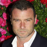 'Ray Donovan' Star Liev Schreiber Faces Harassment Charge In Hudson Valley