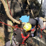 PHOTOS: Firefighters Rescue Teen Stuck In Tree Hanging Over Hunterdon County Waterfall