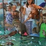 Maritime Aquarium Offering Free Admission To Norwalk Residents On Saturday