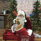 Picture Your Pet With Santa Claus In Hasbrouck Heights