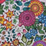 Adult Coloring Club Tops West Nyack Free Library Offerings