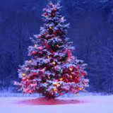 Demarest Christmas Tree Lighting To Be Held Dec. 8