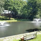 Greenburgh Cleans Up Crane's Pond; Town Hall's Lagoon May Be Next