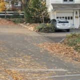 Demarest Leaf Collection Changing To Bags
