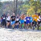 Race This Weekend At 'Run The Farm' Series In Somers