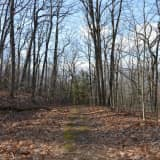 In Ringwood: Ring in 2018 With A Hike