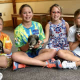 Darien Families Team Up For Labor Day Lemonade Stand To Benefit Town's Nature Center