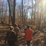 HH Land Trust To Protect 350 Acres Of Putnam Valley's Granite Mountain
