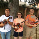 Irvington's Top Musicians Represent High School On All-State Orchestra