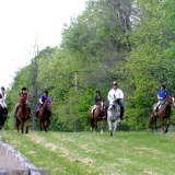 Hunter Pace Draws Crowd To Rombout Foxhounds In Dutchess