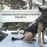 Connecticut State Police K-9 Silver Receives Protective Vest From Nonprofit