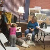 Youngsters Find Four-Pawed Reading Buddy At Shelton Bookstore
