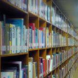 Ridgewood Mom: Thief Rang Up $1,000 In Mahwah, Wyckoff Library Fines Using Son's Card