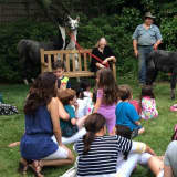 Love Llamas Up Close At Carmel Library Next Wednesday