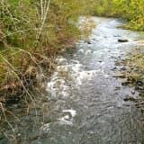 Body Found In Naugatuck River