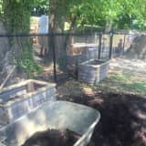 Nyack Park Conservancy Invites Community To Help Plant Flowers