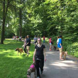 Paramus Pack Walk Helps Owners, Dogs Bond