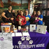 Puppy House Fundraiser To Benefit Homeless Dogs In Lyndhurst