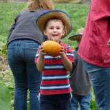 Get In The Halloween Spirit With Fall Events