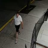 Know Him? Police Seek To ID Suspect Who Removed Flags, Damaged Posts In Area