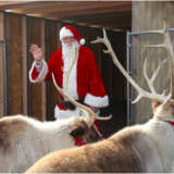 Annual Reindeer Festival & Santa's Workshop Storms Back Into Greenwich