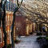 College Mumps Outbreaks At Harvard, Sacred Heart Spark Concerns