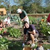 Cook What You Grow With Bergenfield Workshop