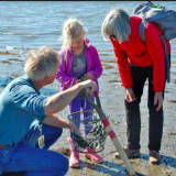 How Well Do You Know Shellfish? Find Out In Greenwich Class