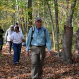 Tree Conservancy Of Darien Touts Health Benefits Of Forest-Bathing Walks