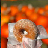 National Apple Cider Day = Apple Cider Doughnuts From A Westchester Farm